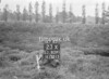 SJ839123X, Ordnance Survey Revision Point photograph in Greater Manchester