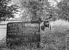 SJ839137A, Ordnance Survey Revision Point photograph in Greater Manchester