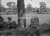 SJ829136B, Ordnance Survey Revision Point photograph in Greater Manchester