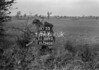 SJ889387X, Ordnance Survey Revision Point photograph in Greater Manchester