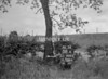 SJ909358A, Ordnance Survey Revision Point photograph in Greater Manchester