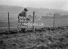 SJ909268B, Ordnance Survey Revision Point photograph in Greater Manchester