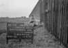 SJ899407A, Ordnance Survey Revision Point photograph in Greater Manchester