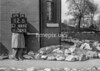 SJ889212B, Ordnance Survey Revision Point photograph in Greater Manchester