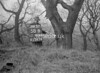 SJ919258B, Ordnance Survey Revision Point photograph in Greater Manchester