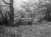 SJ919258A, Ordnance Survey Revision Point photograph in Greater Manchester