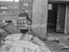SJ919213B, Ordnance Survey Revision Point photograph in Greater Manchester