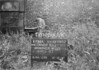 SJ899234A, Ordnance Survey Revision Point photograph in Greater Manchester