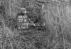 SJ929277B, Ordnance Survey Revision Point photograph in Greater Manchester