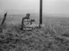 SJ919289B, Ordnance Survey Revision Point photograph in Greater Manchester