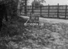 SJ909432W, Ordnance Survey Revision Point photograph in Greater Manchester