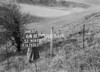 SJ909264B, Ordnance Survey Revision Point photograph in Greater Manchester