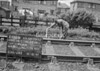 SJ899203B, Ordnance Survey Revision Point photograph in Greater Manchester