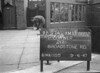 SJ889287A, Ordnance Survey Revision Point photograph in Greater Manchester