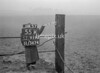 SJ919255K, Ordnance Survey Revision Point photograph in Greater Manchester