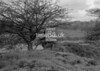 SJ909232A, Ordnance Survey Revision Point photograph in Greater Manchester