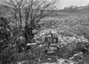 SJ909250B, Ordnance Survey Revision Point photograph in Greater Manchester