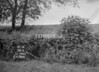 SJ909356B, Ordnance Survey Revision Point photograph in Greater Manchester