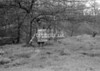 SJ909225B, Ordnance Survey Revision Point photograph in Greater Manchester