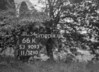 SJ909366K, Ordnance Survey Revision Point photograph in Greater Manchester