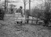 SJ919300B, Ordnance Survey Revision Point photograph in Greater Manchester