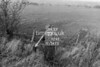 SJ929277A, Ordnance Survey Revision Point photograph in Greater Manchester