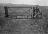 SJ909308A, Ordnance Survey Revision Point photograph in Greater Manchester