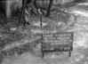 SJ849246B, Ordnance Survey Revision Point photograph in Greater Manchester