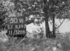 SJ859250W, Ordnance Survey Revision Point photograph in Greater Manchester