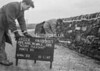 SJ919702A, Ordnance Survey Revision Point photograph in Greater Manchester