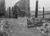 SJ919836A, Ordnance Survey Revision Point photograph in Greater Manchester