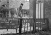 SJ909708A, Ordnance Survey Revision Point photograph in Greater Manchester