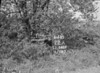 SJ848922A, Ordnance Survey Revision Point photograph in Greater Manchester