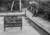 SJ869325B, Ordnance Survey Revision Point photograph in Greater Manchester
