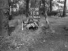 SJ868610B, Ordnance Survey Revision Point photograph in Greater Manchester