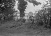 SJ858881B, Ordnance Survey Revision Point photograph in Greater Manchester