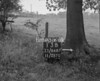 SJ868713B, Ordnance Survey Revision Point photograph in Greater Manchester