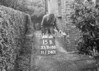 SJ868815B, Ordnance Survey Revision Point photograph in Greater Manchester