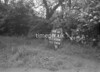 SJ858861A, Ordnance Survey Revision Point photograph in Greater Manchester