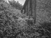 SJ868803A, Ordnance Survey Revision Point photograph in Greater Manchester