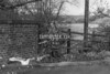 SJ918552B, Ordnance Survey Revision Point photograph in Greater Manchester