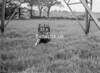 SJ938718B, Ordnance Survey Revision Point photograph in Greater Manchester