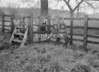 SJ938565A, Ordnance Survey Revision Point photograph in Greater Manchester