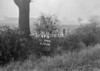 SJ908641B, Ordnance Survey Revision Point photograph in Greater Manchester