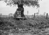 SJ938558A, Ordnance Survey Revision Point photograph in Greater Manchester