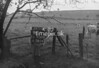SJ928892B, Ordnance Survey Revision Point photograph in Greater Manchester