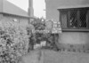 SJ918828A, Ordnance Survey Revision Point photograph in Greater Manchester