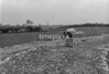 SJ918795B1, Ordnance Survey Revision Point photograph in Greater Manchester