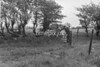 SJ928718B, Ordnance Survey Revision Point photograph in Greater Manchester