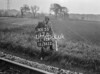 SJ928517B, Ordnance Survey Revision Point photograph in Greater Manchester